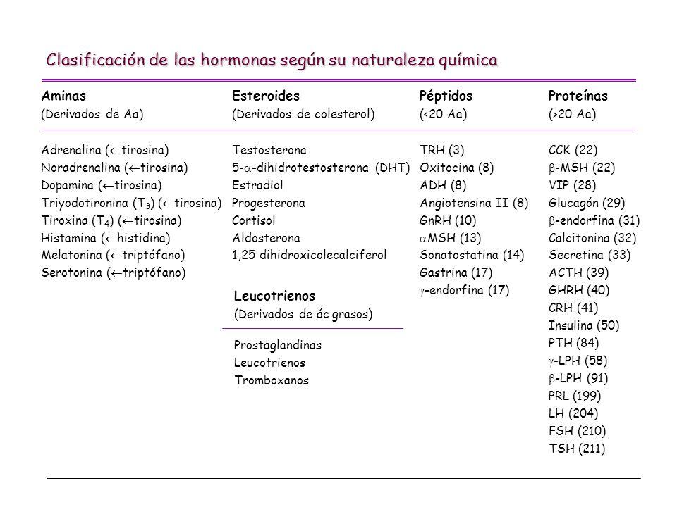 Clasificación de las hormonas según su naturaleza química