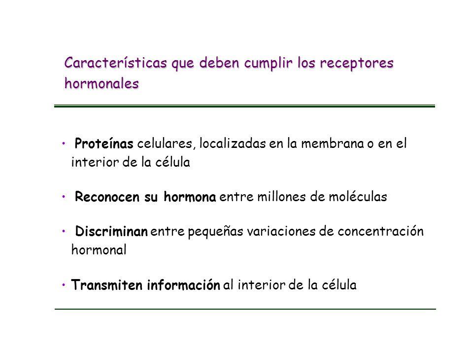 Características que deben cumplir los receptores hormonales