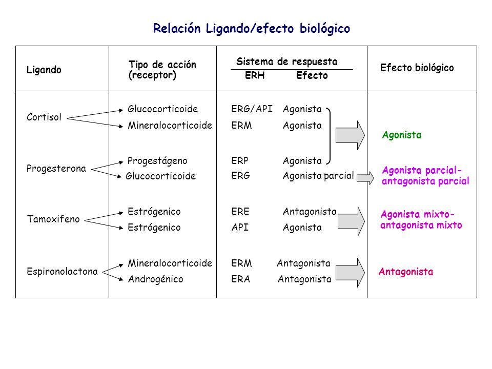 Relación Ligando/efecto biológico