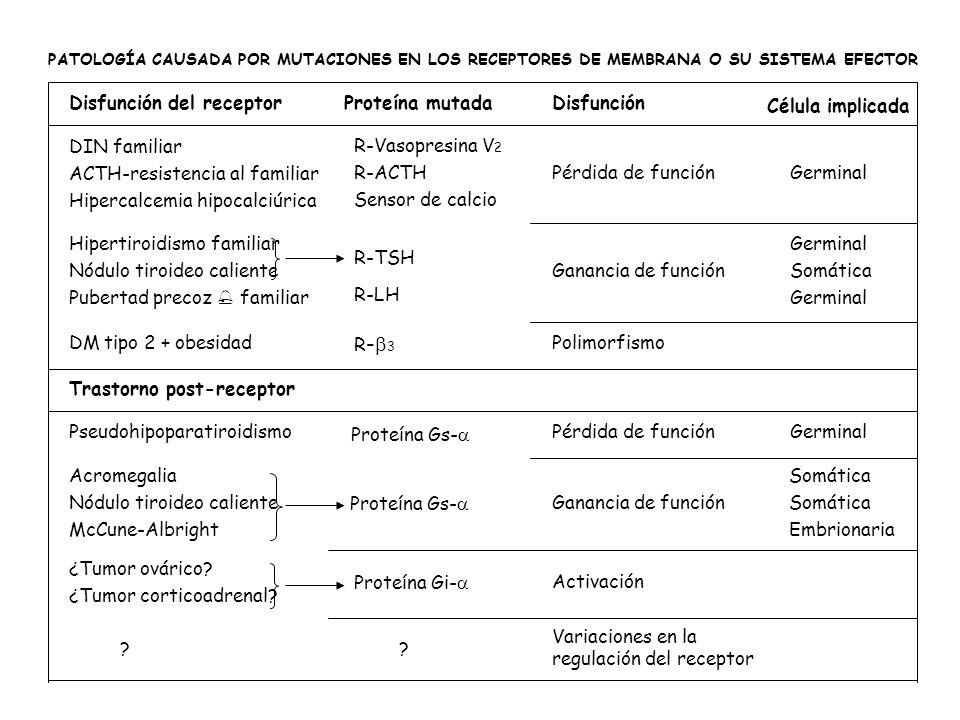 ACTH-resistencia al familiar Hipercalcemia hipocalciúrica