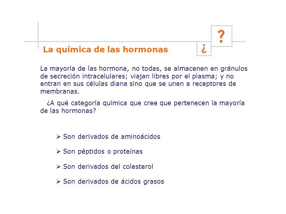La química de las hormonas