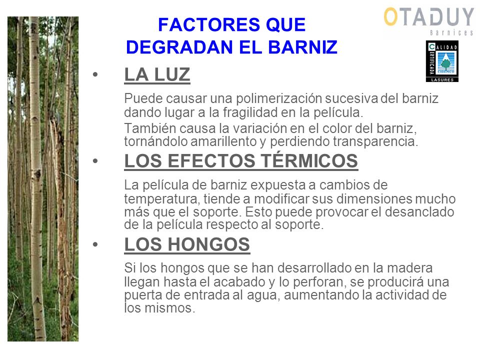 FACTORES QUE DEGRADAN EL BARNIZ