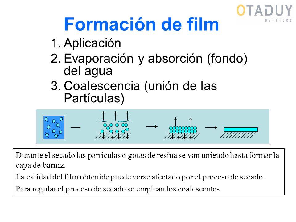 Formación de film Aplicación Evaporación y absorción (fondo) del agua