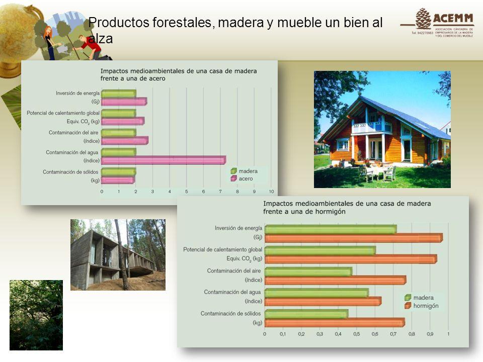 Productos forestales, madera y mueble un bien al alza