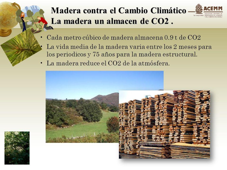 Madera contra el Cambio Climático La madera un almacen de CO2 .