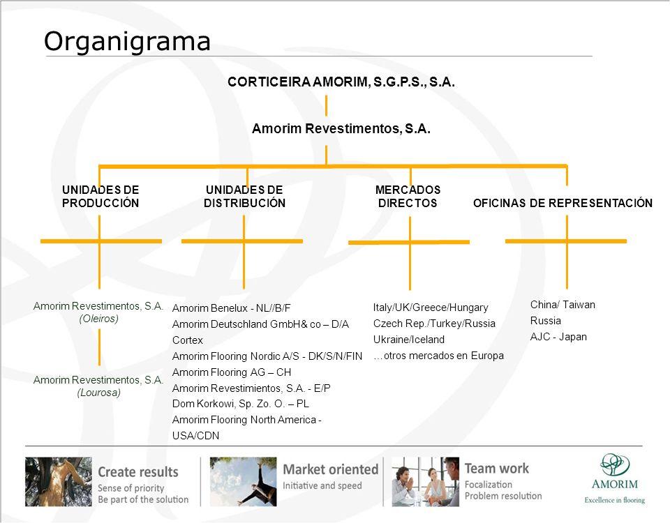 Organigrama CORTICEIRA AMORIM, S.G.P.S., S.A.