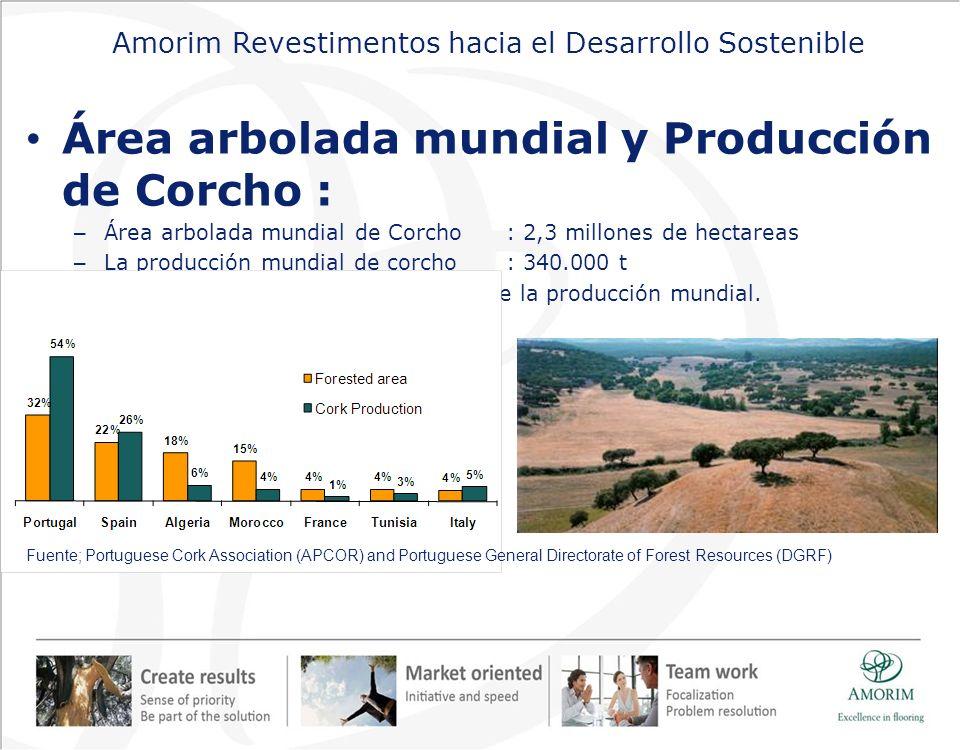 Amorim Revestimentos hacia el Desarrollo Sostenible