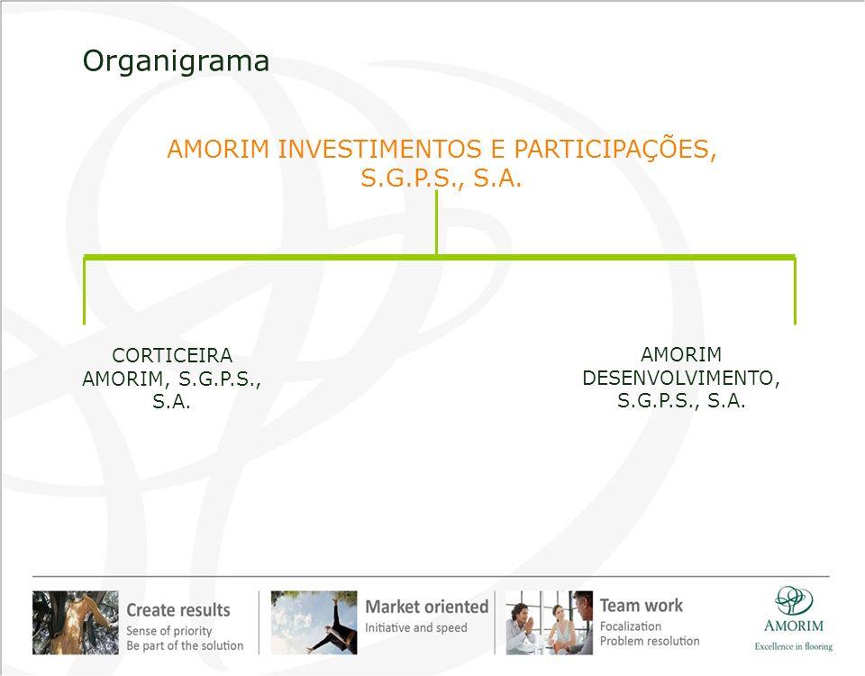 Organigrama AMORIM INVESTIMENTOS E PARTICIPAÇÕES, S.G.P.S., S.A.