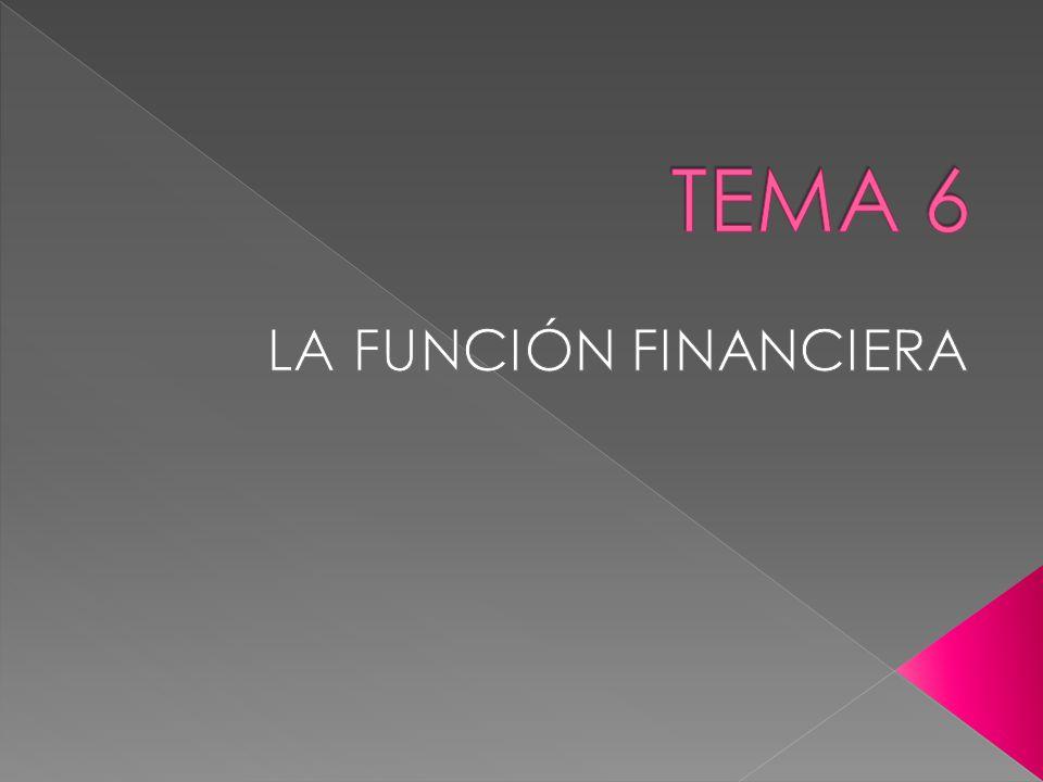 TEMA 6 LA FUNCIÓN FINANCIERA