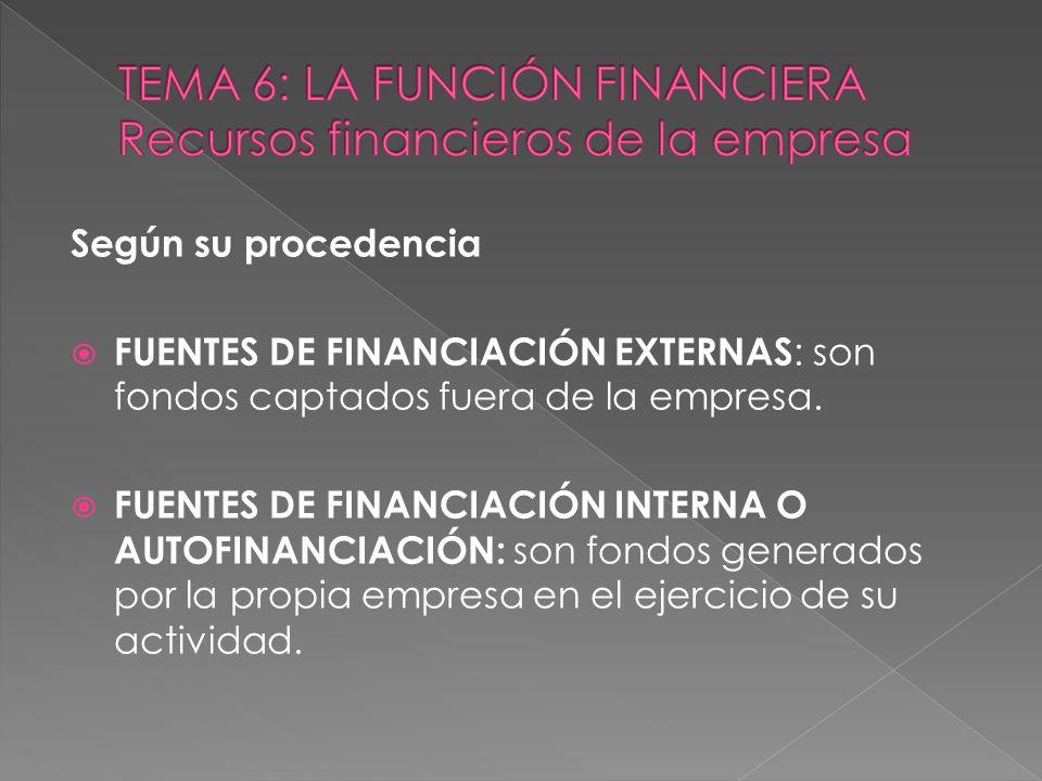 TEMA 6: LA FUNCIÓN FINANCIERA Recursos financieros de la empresa