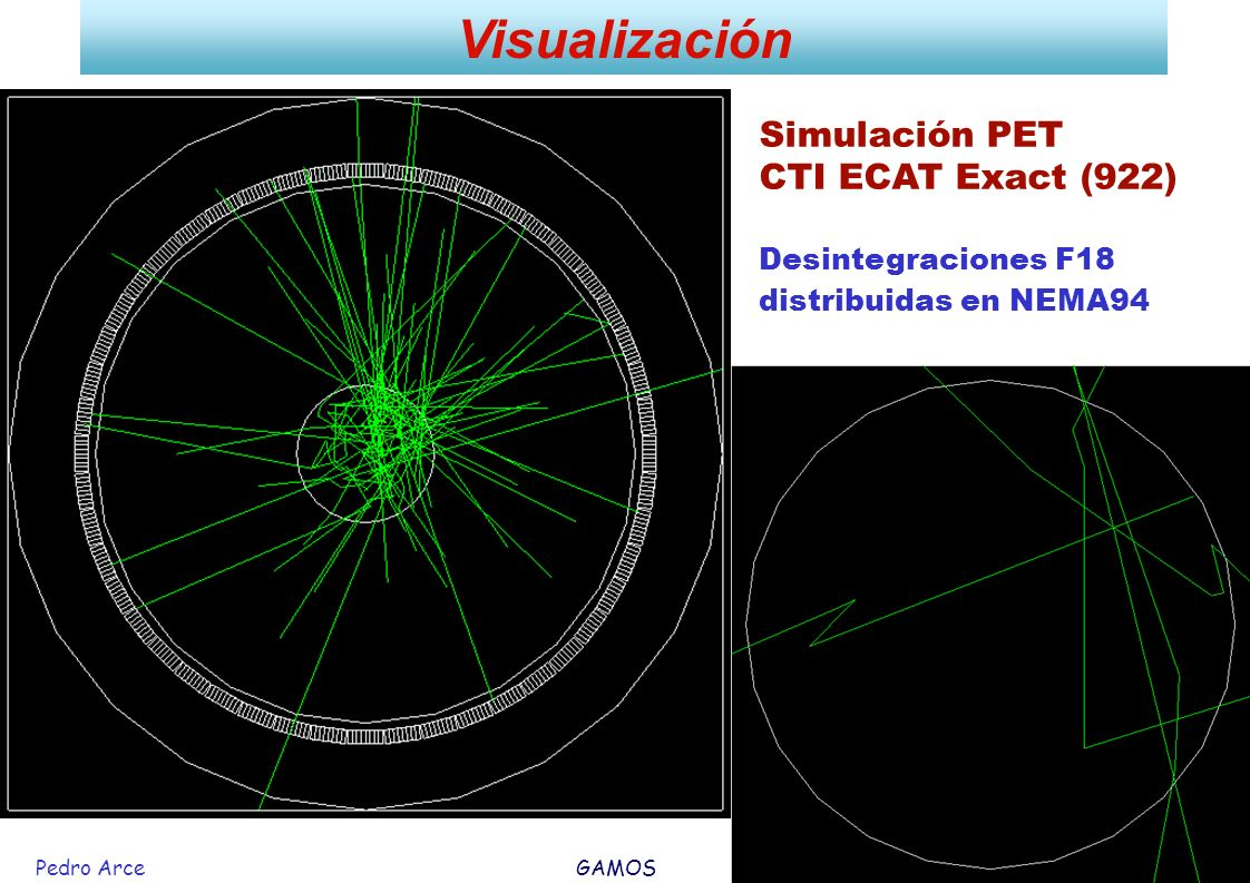 Visualización Simulación PET CTI ECAT Exact (922) Desintegraciones F18