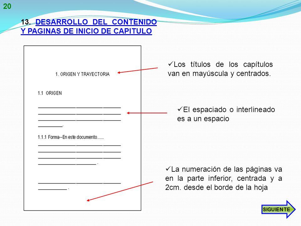13. DESARROLLO DEL CONTENIDO Y PAGINAS DE INICIO DE CAPITULO
