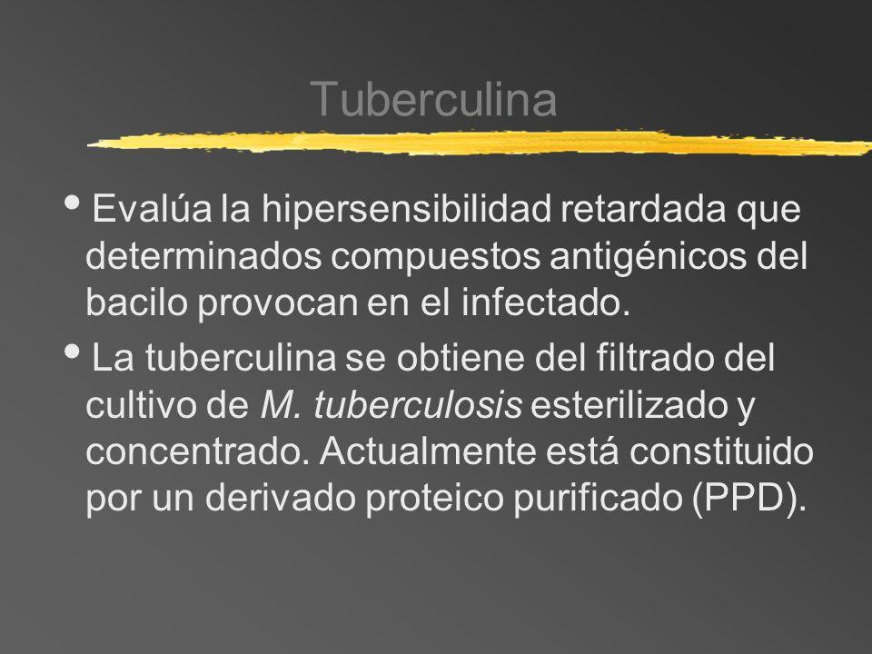 TuberculinaEvalúa la hipersensibilidad retardada que determinados compuestos antigénicos del bacilo provocan en el infectado.