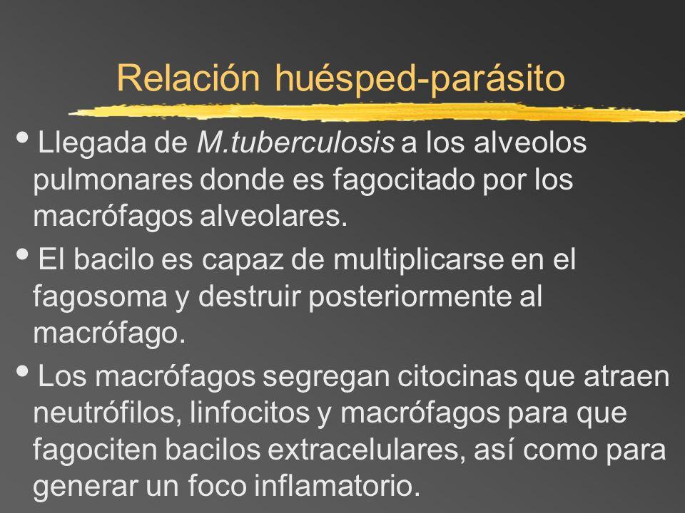 Relación huésped-parásito