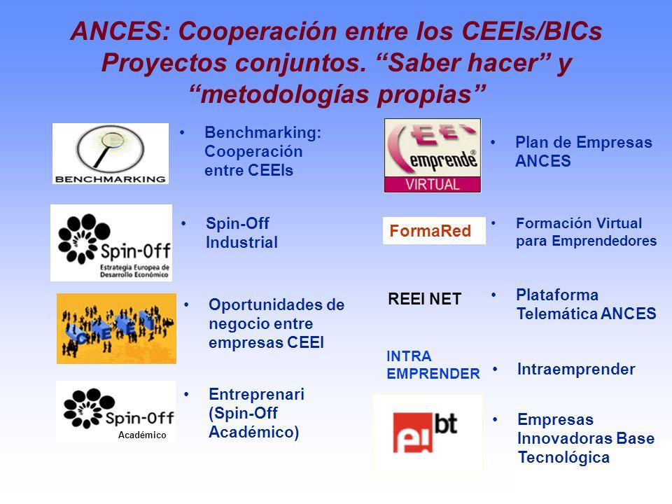 ANCES: Cooperación entre los CEEIs/BICs Proyectos conjuntos