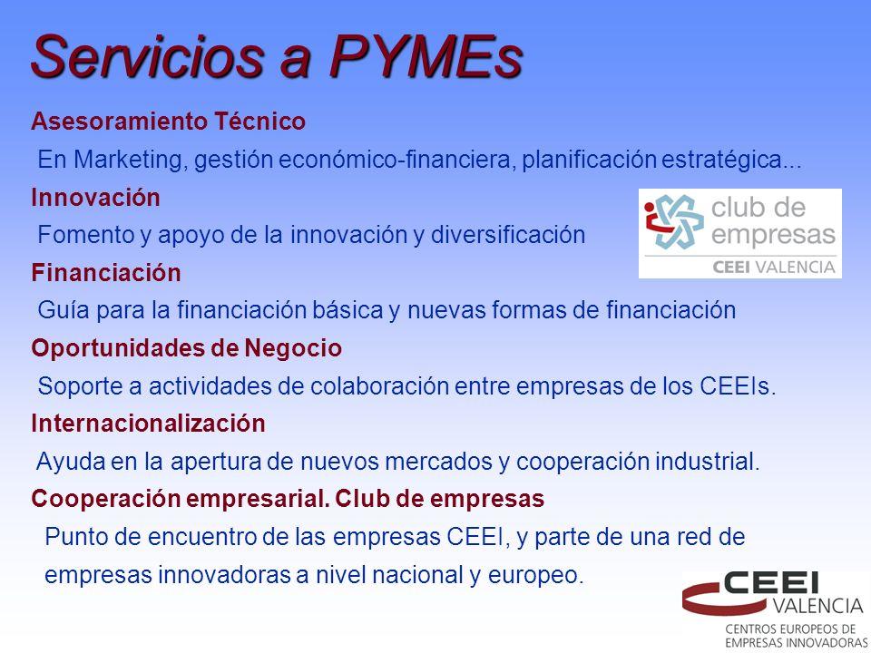 Servicios a PYMEs Asesoramiento Técnico