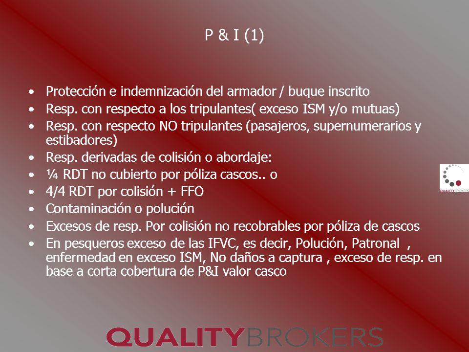 P & I (1) Protección e indemnización del armador / buque inscrito