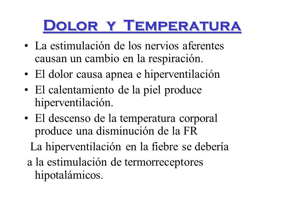 Control De La Respiración Y Dolor De Espalda: FISIOLOGÍA DE LA RESPIRACIÓN (Regulación Y Control