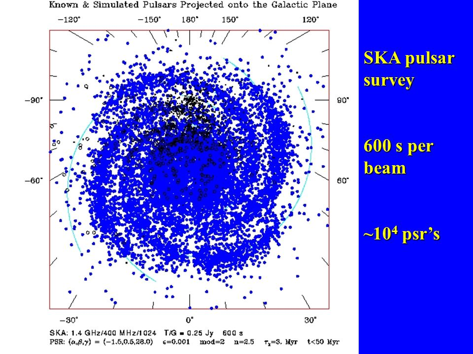 SKA pulsar survey 600 s per beam ~104 psr's