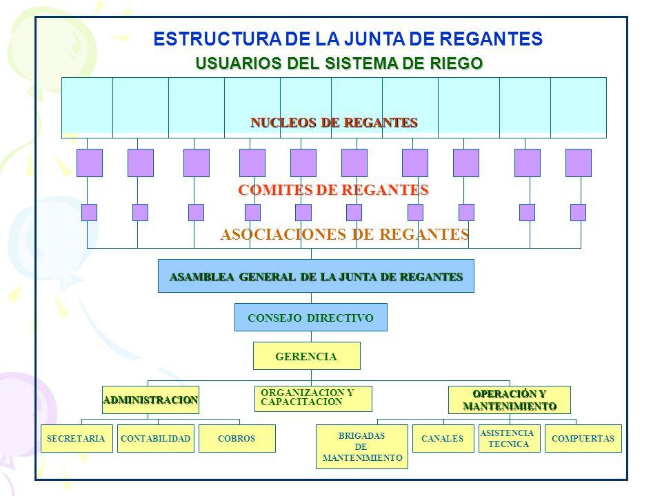 ESTRUCTURA DE LA JUNTA DE REGANTES
