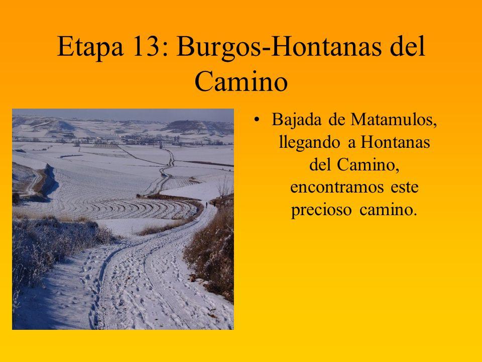 Etapa 13: Burgos-Hontanas del Camino