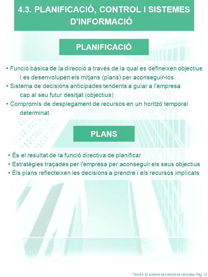 4.3. PLANIFICACIÓ, CONTROL I SISTEMES