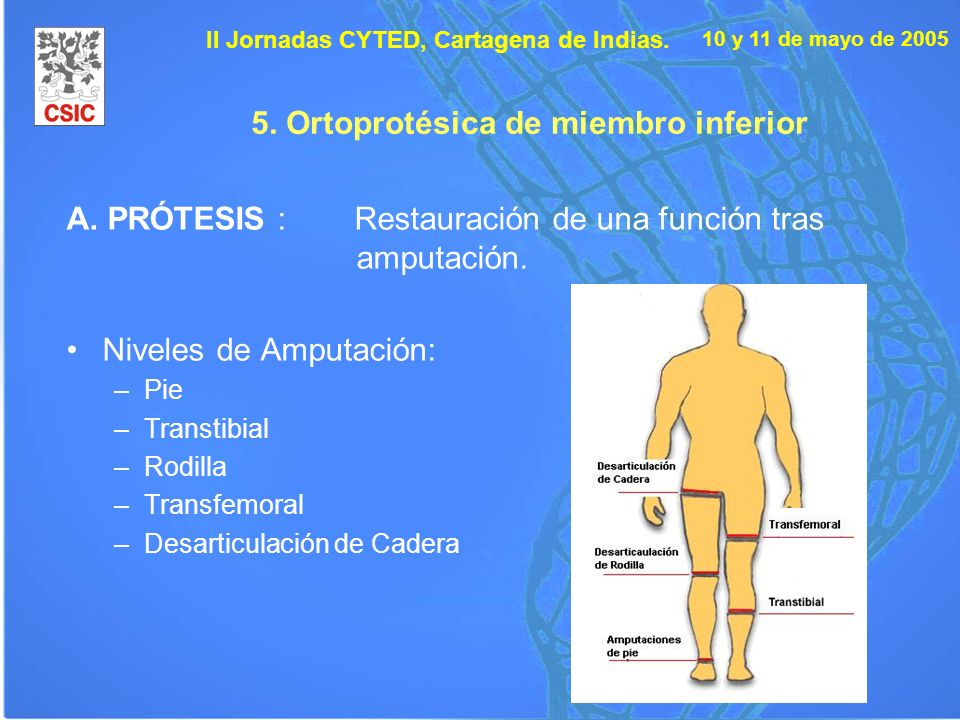 5. Ortoprotésica de miembro inferior