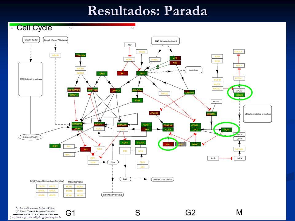 Resultados: Parada Grafico realizado con PathwayEditor