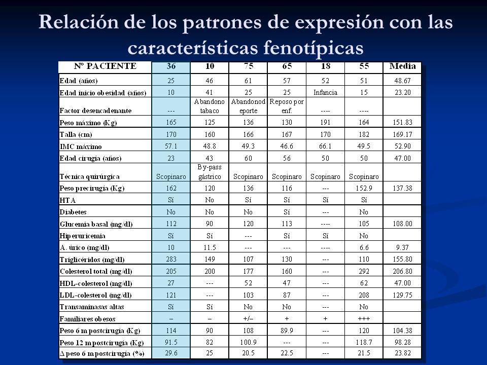 Relación de los patrones de expresión con las características fenotípicas
