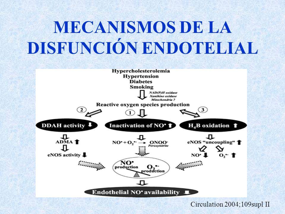 MECANISMOS DE LA DISFUNCIÓN ENDOTELIAL