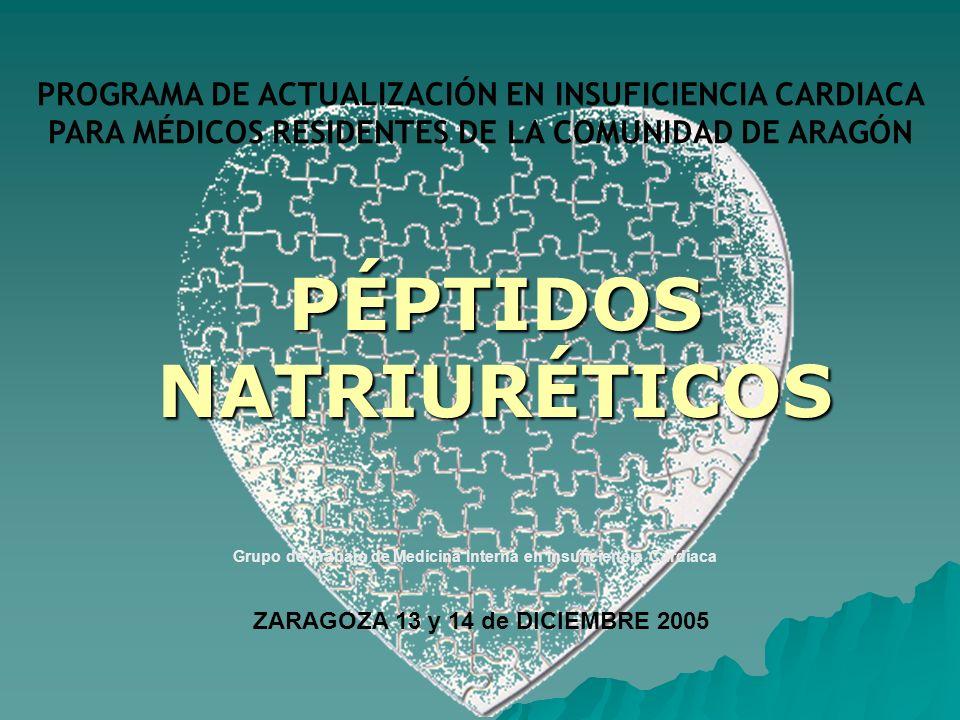 ZARAGOZA 13 y 14 de DICIEMBRE 2005
