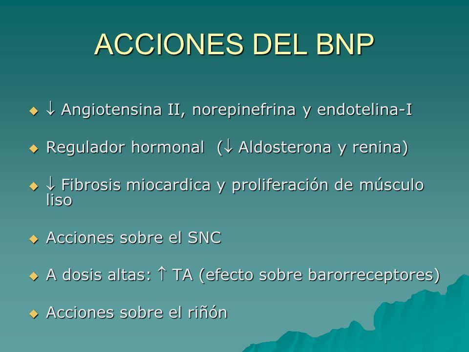ACCIONES DEL BNP  Angiotensina II, norepinefrina y endotelina-I