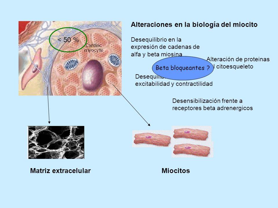 Alteraciones en la biología del miocito