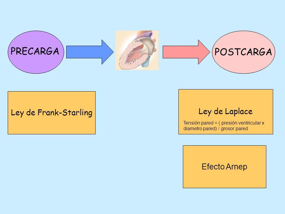 POSTCARGA PRECARGA Ley de Laplace Ley de Frank-Starling Efecto Arnep