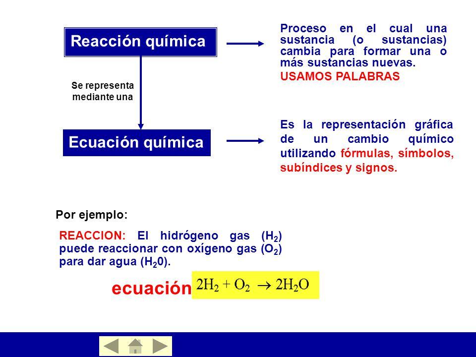 Ecuacion de la fotosintesis balanceada 60