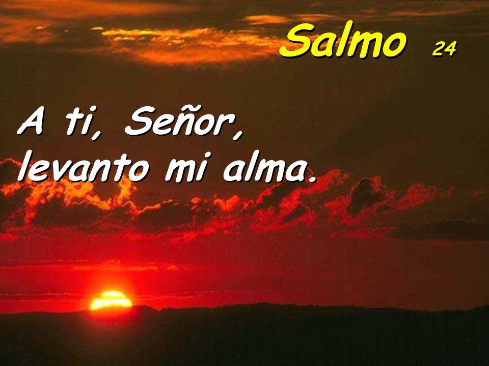Salmo 24 A ti, Señor, levanto mi alma.