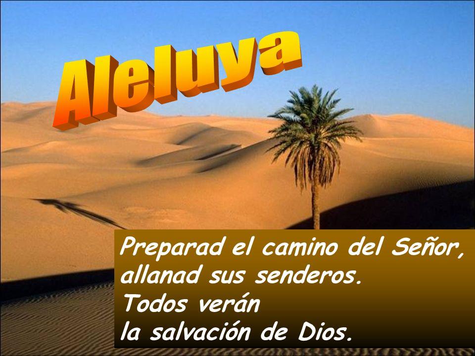 AleluyaPreparad el camino del Señor, allanad sus senderos.