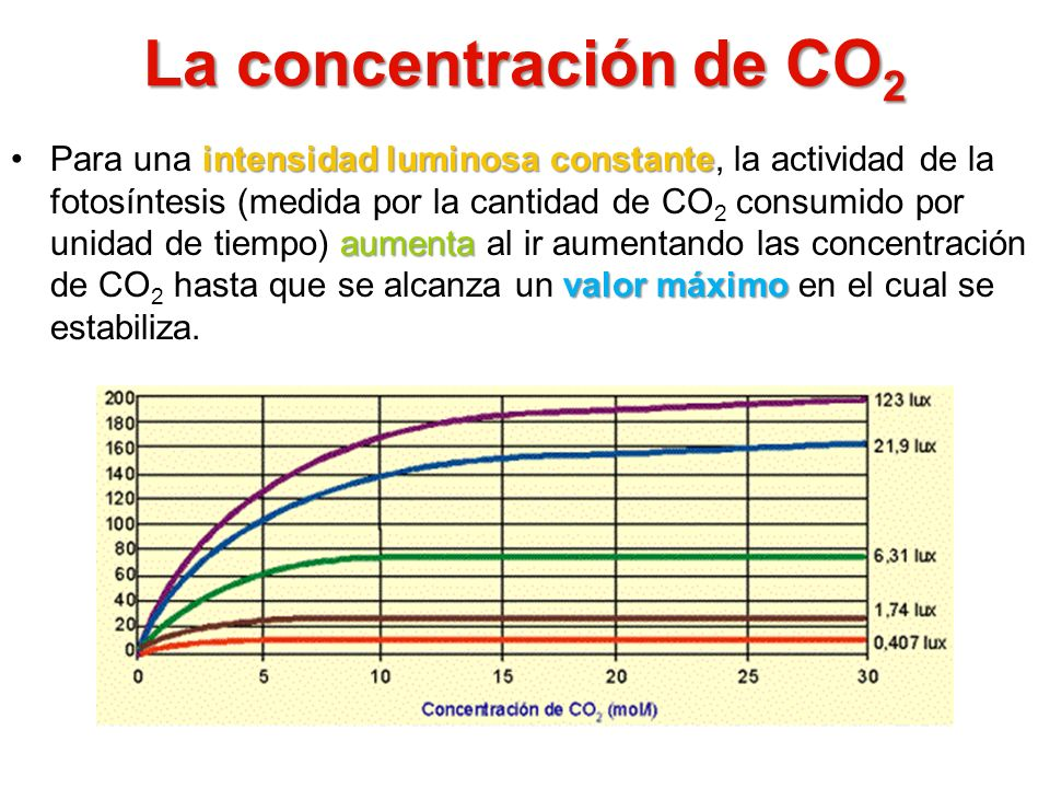 La concentración de CO2