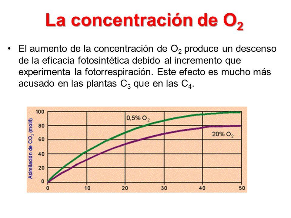 La concentración de O2