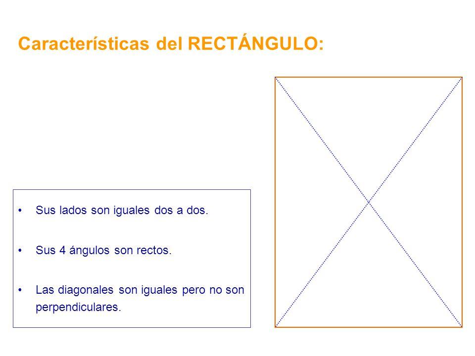 Características del RECTÁNGULO:
