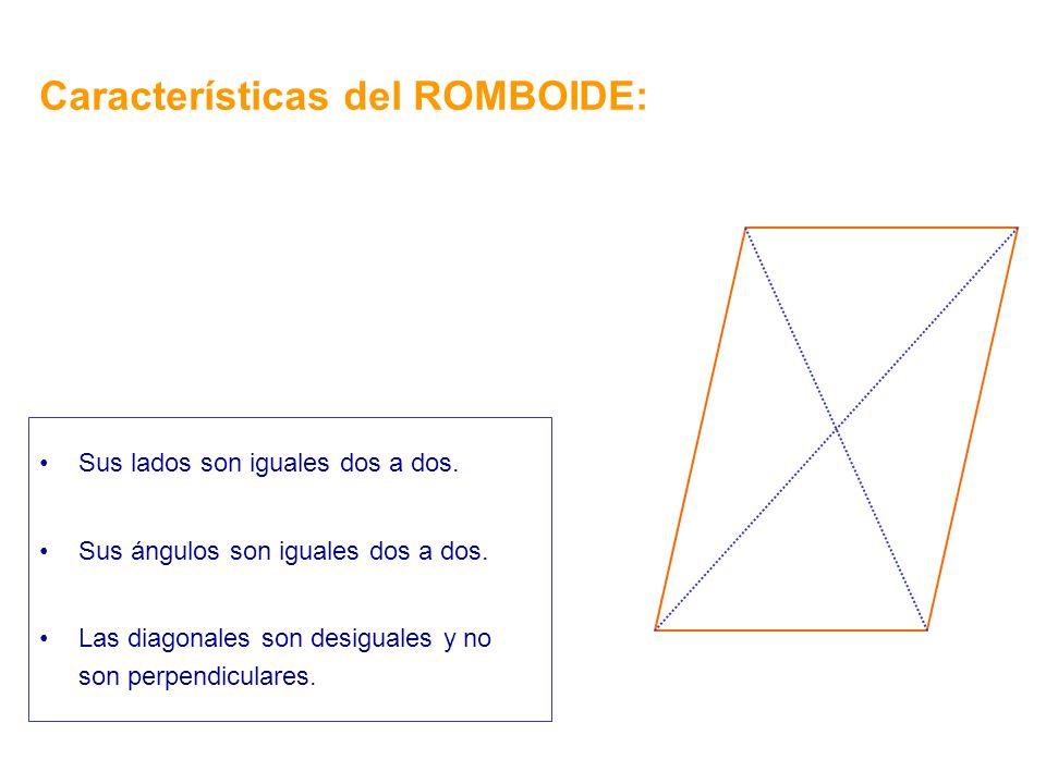 Características del ROMBOIDE:
