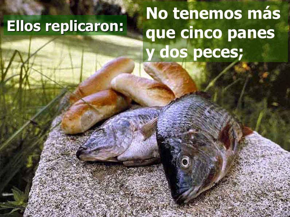 No tenemos más que cinco panes y dos peces;