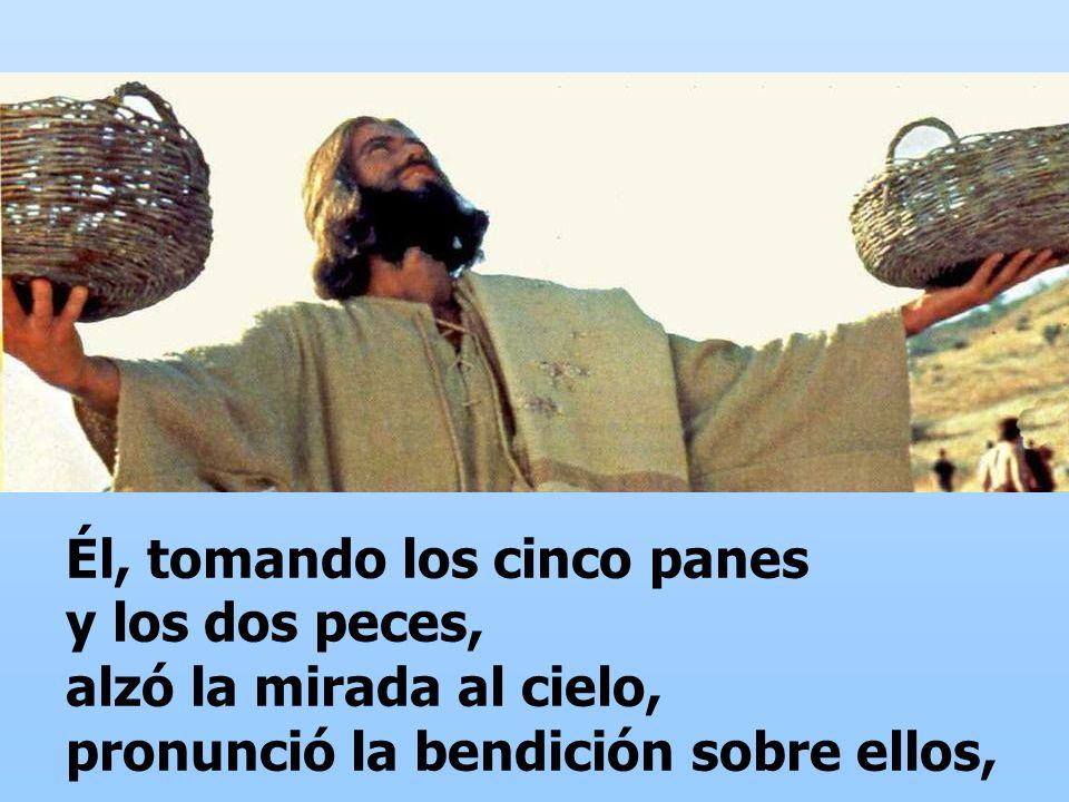 Él, tomando los cinco panes y los dos peces, alzó la mirada al cielo, pronunció la bendición sobre ellos,