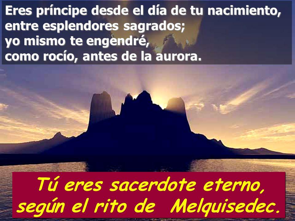 Tú eres sacerdote eterno, según el rito de Melquisedec.