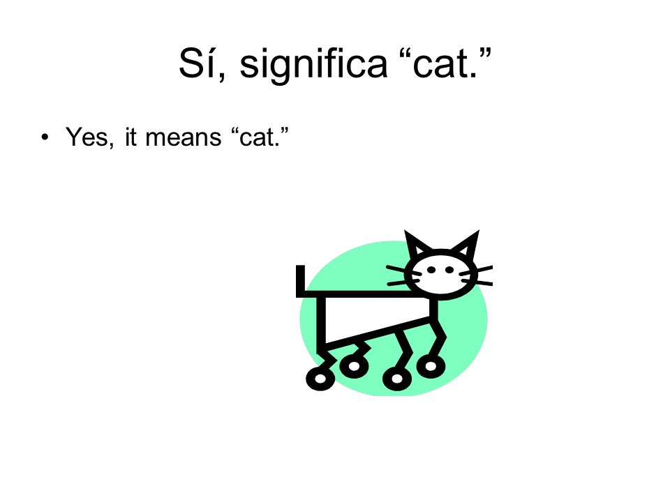 Sí, significa cat. Yes, it means cat.