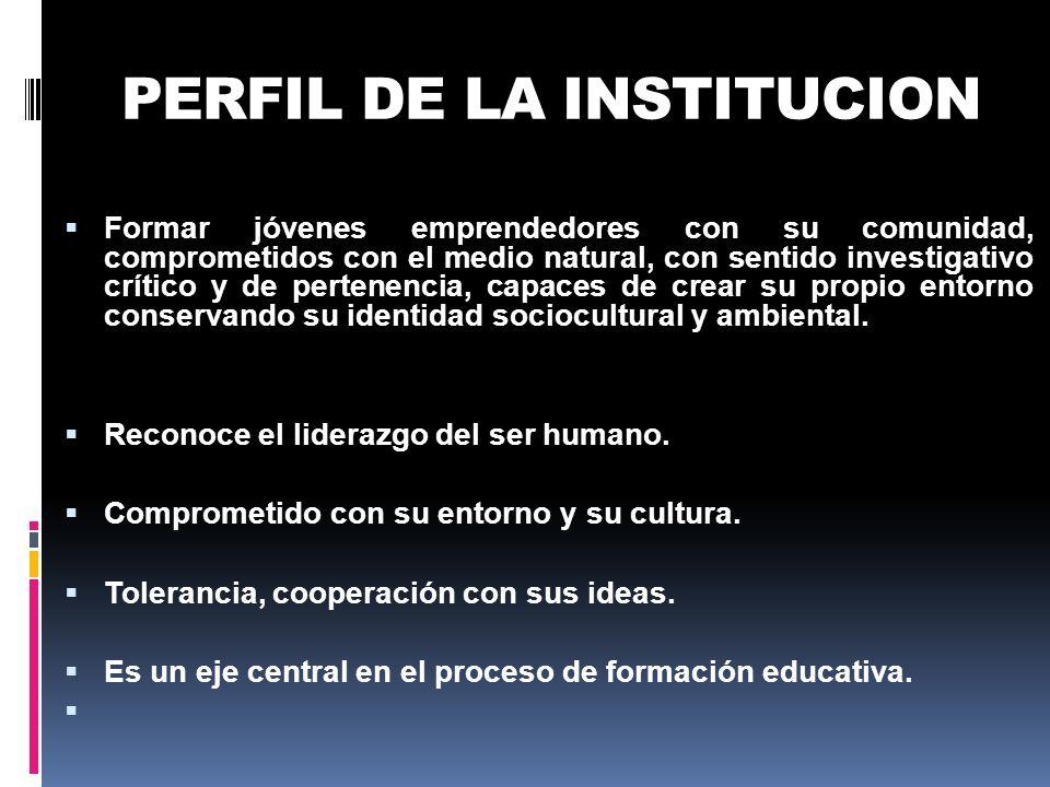 PERFIL DE LA INSTITUCION