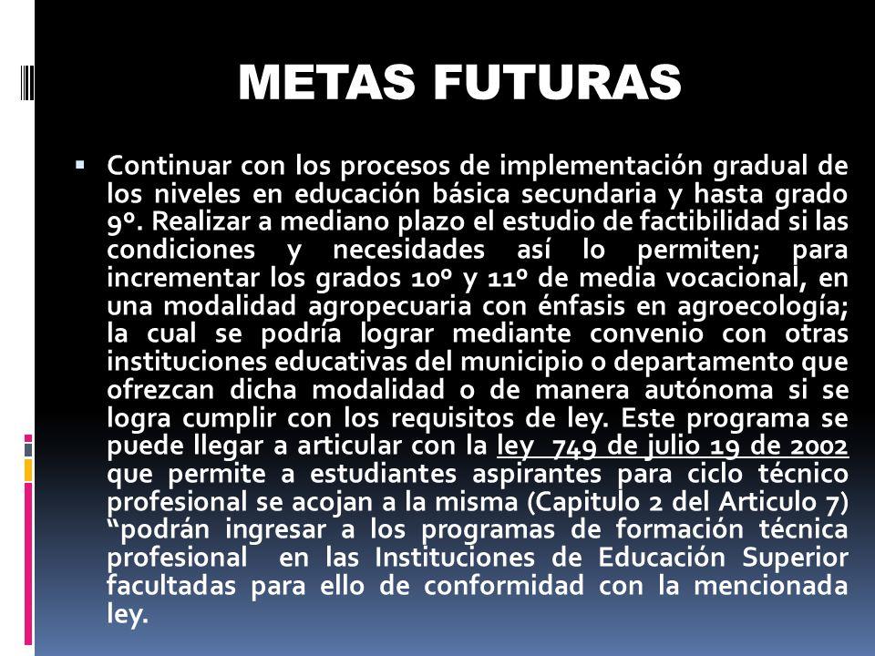 METAS FUTURAS