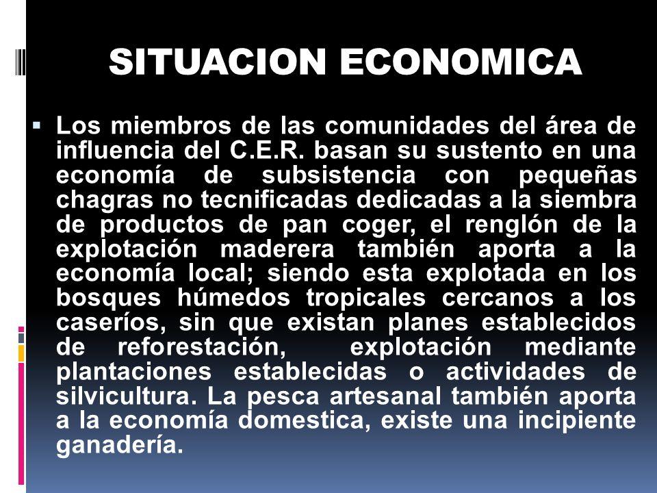 SITUACION ECONOMICA