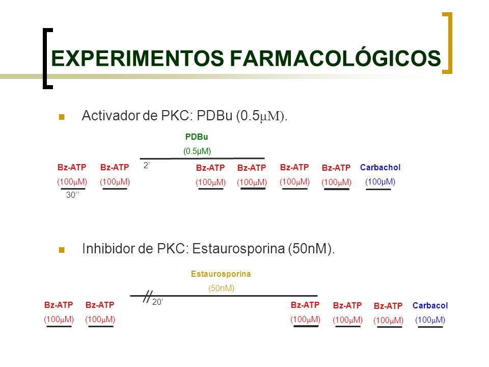 EXPERIMENTOS FARMACOLÓGICOS