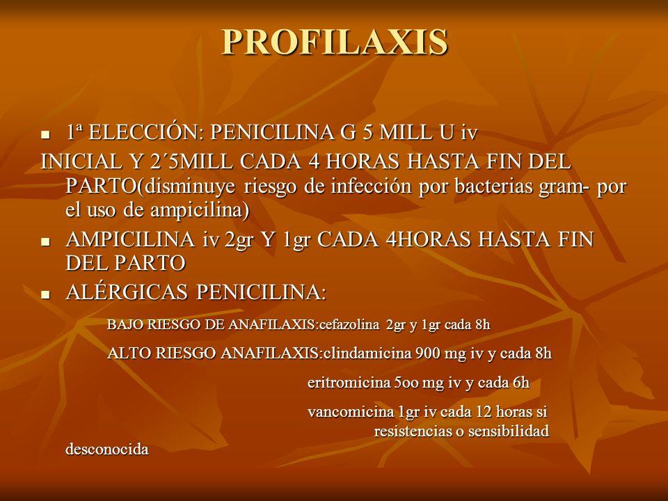 PROFILAXIS 1ª ELECCIÓN: PENICILINA G 5 MILL U iv